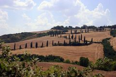 Viva la Toscana2