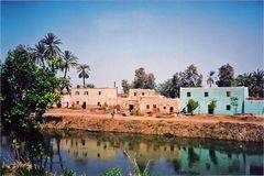 Vivere sul Nilo (Giugno 2006)