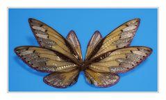Vlinder sierraad