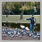 Vögel Füttern im Stadtpark