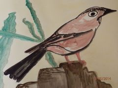 Vögel ( gemalt)