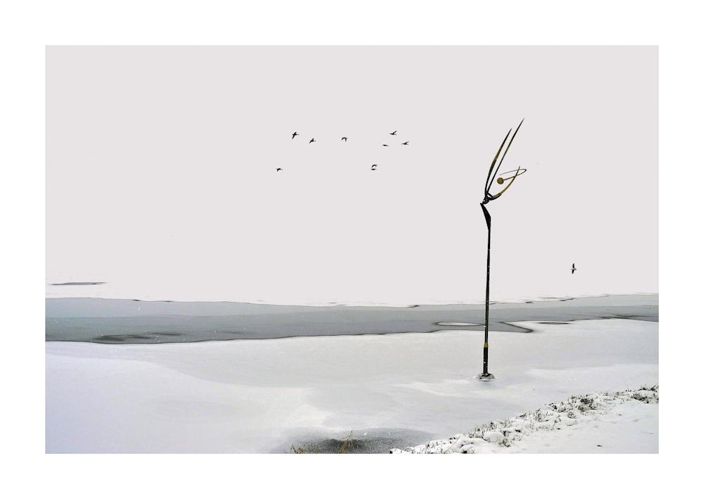 Vogelflug...