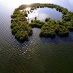 Vogelinsel II