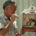 """""""Vogelmarkt """""""
