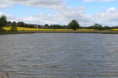 Vogelschutzsee- im HG die 5 Brüder Eiche
