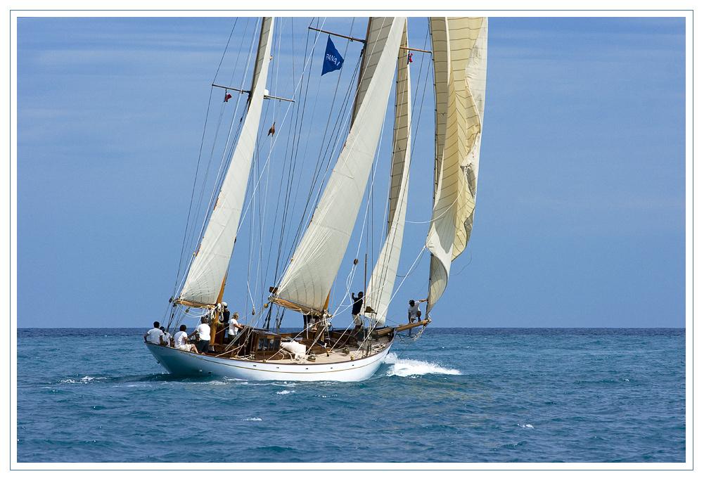 Voiles d'Antibes 2010: Seewärts...