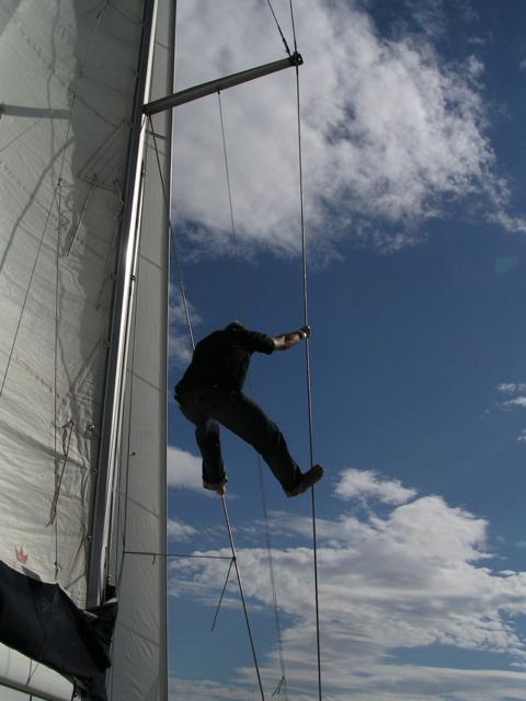 Volando veleggiando