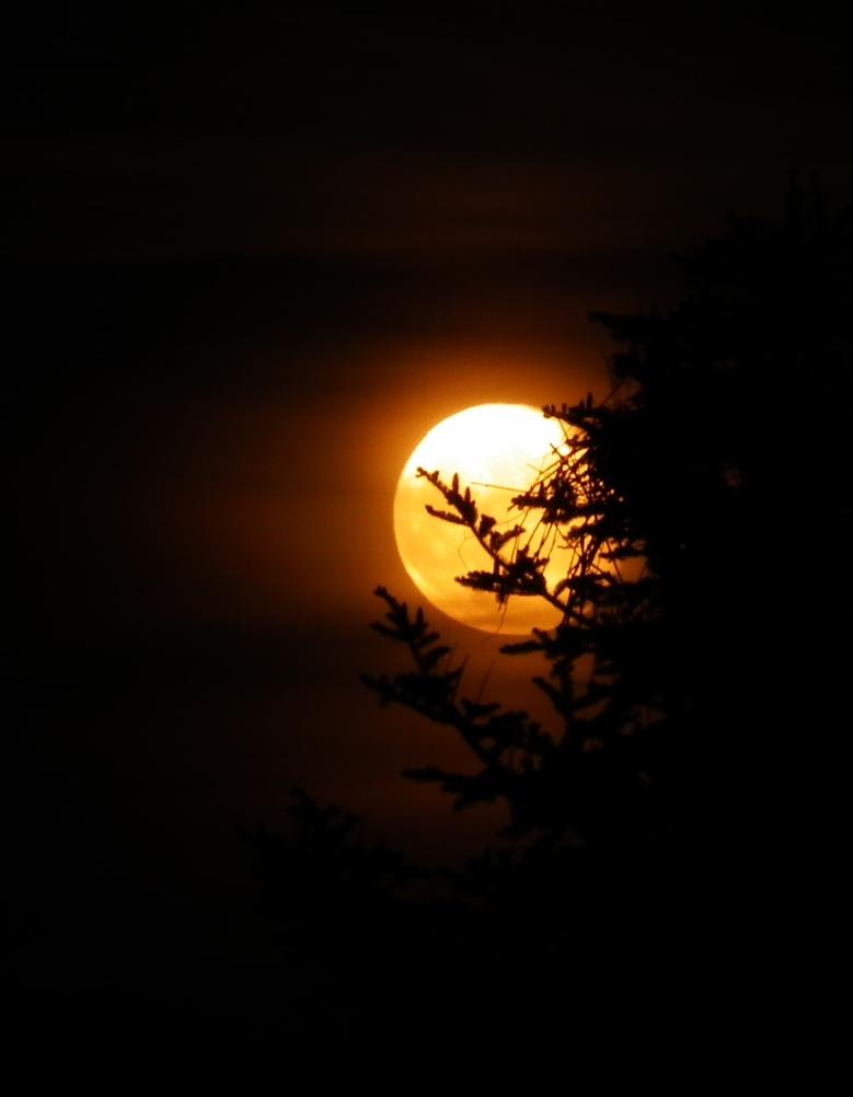 Voll Mond 2
