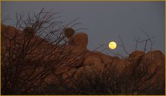 Vollmond an Vogelnestern ... in Namibia