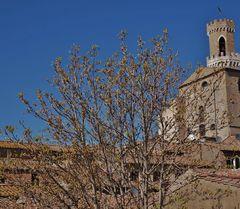 volterra vue sur la ville historique et les toits pleins de mousses