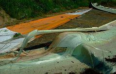 Vom Blitz getroffen-im Wald gelandet-und hierher geschleift-Briesker Windrad