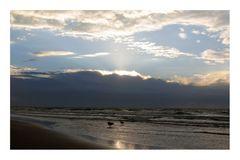 vom Meer her...die Welle steigt.