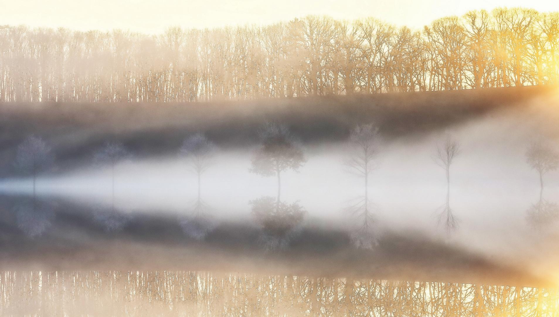 Vom Nebel umschmeichelt