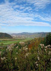 Vom Schwarzwald bis zu den Vogesen