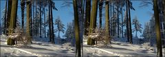 Vom Winter träumen in 3D