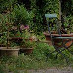 von alten vergessenen Sommergärten