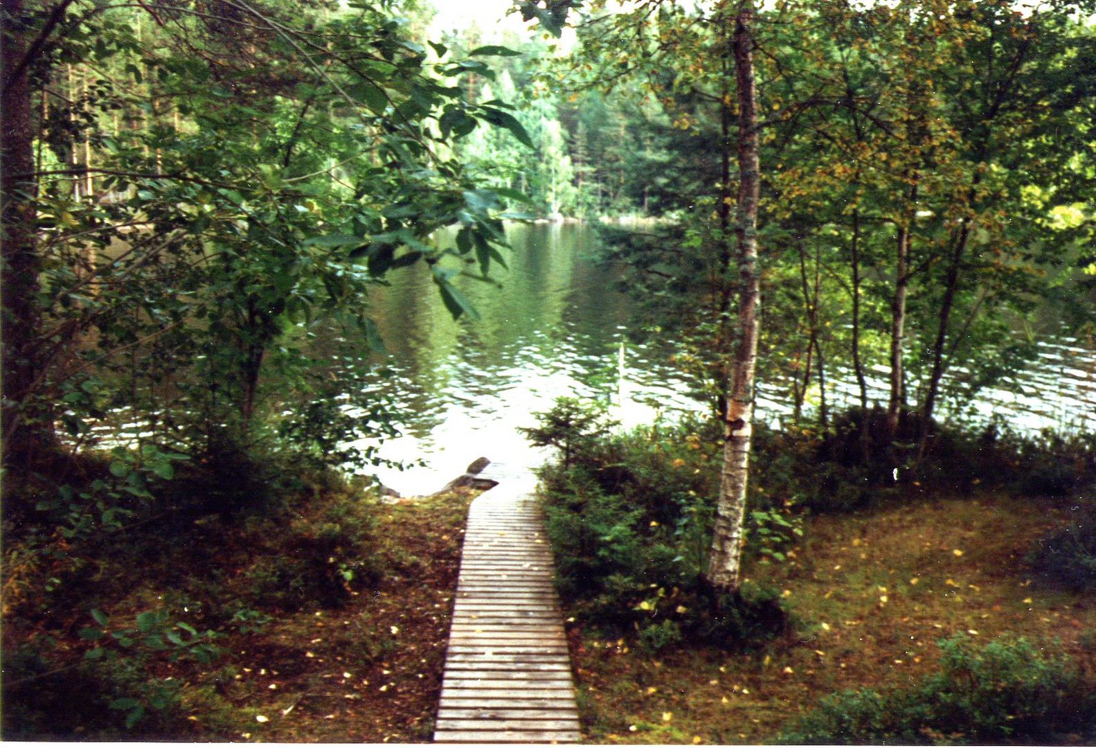 Von der finnischen Sauna direkt in den See springen !      Juli 2004