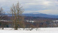 Von der Nollendorfer Höhe habe ich mich vor drei Tagen vom Winter verabschiedet...