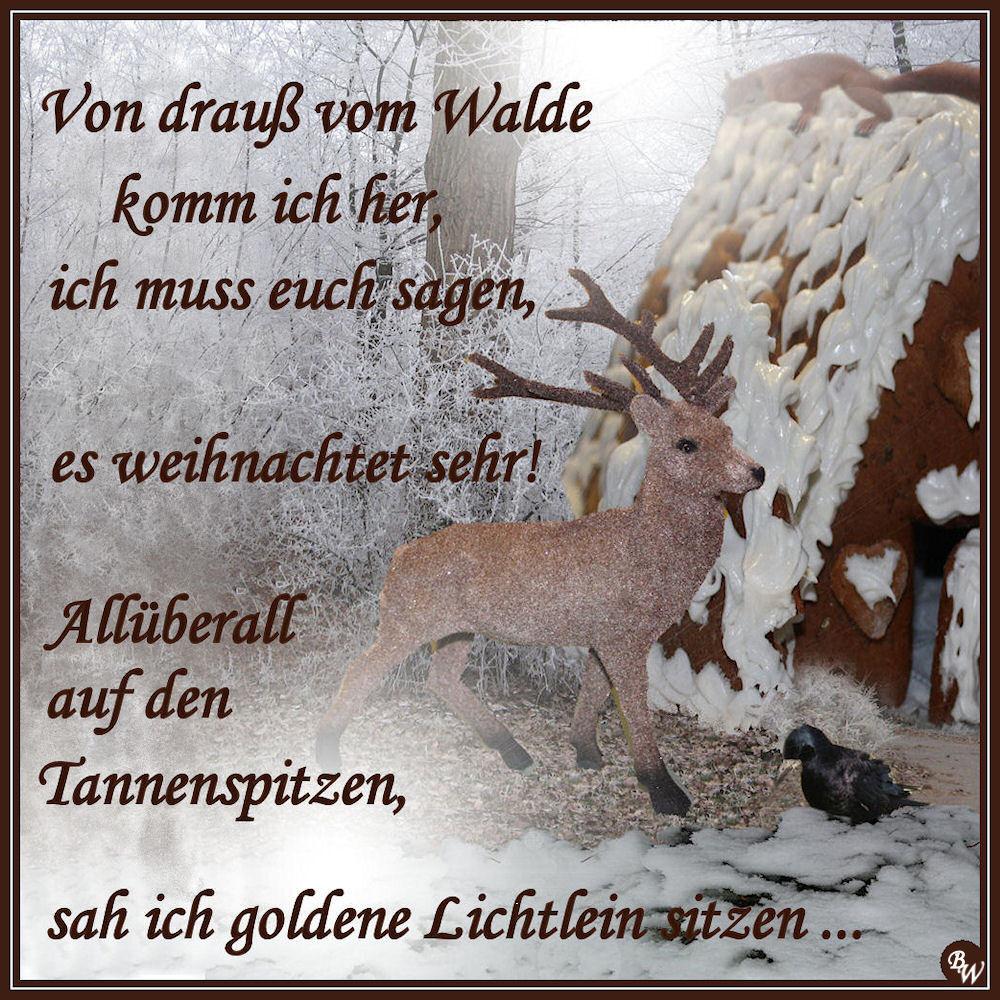 Von Drauß Vom Walde Foto Bild Gratulation Und Feiertage