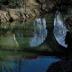 Von Flusshamstern und Fischottern