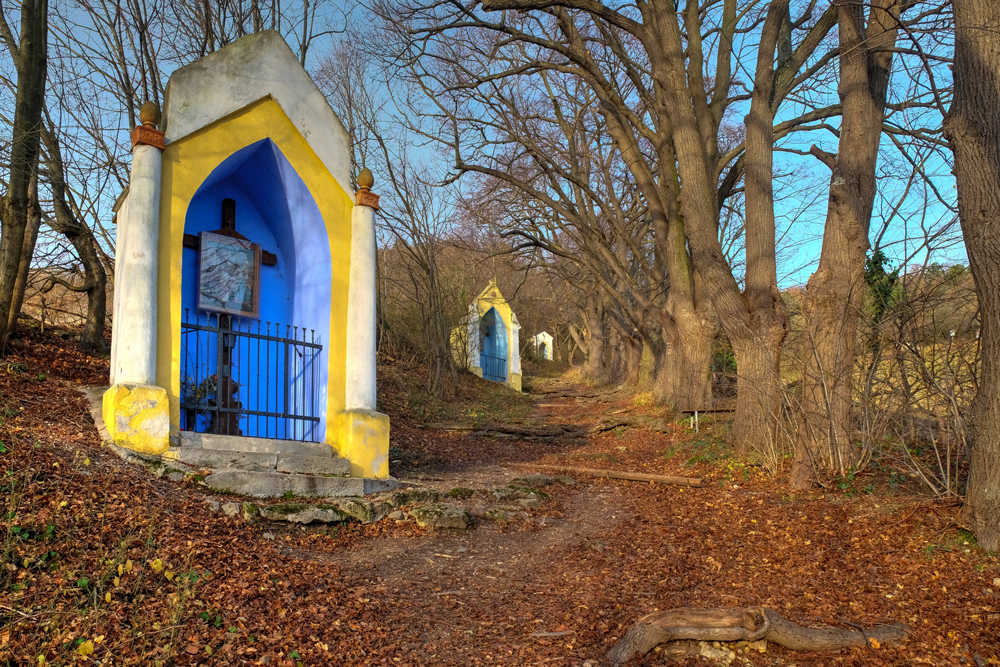 Von Gumpoldskirchen auf den Anninger...