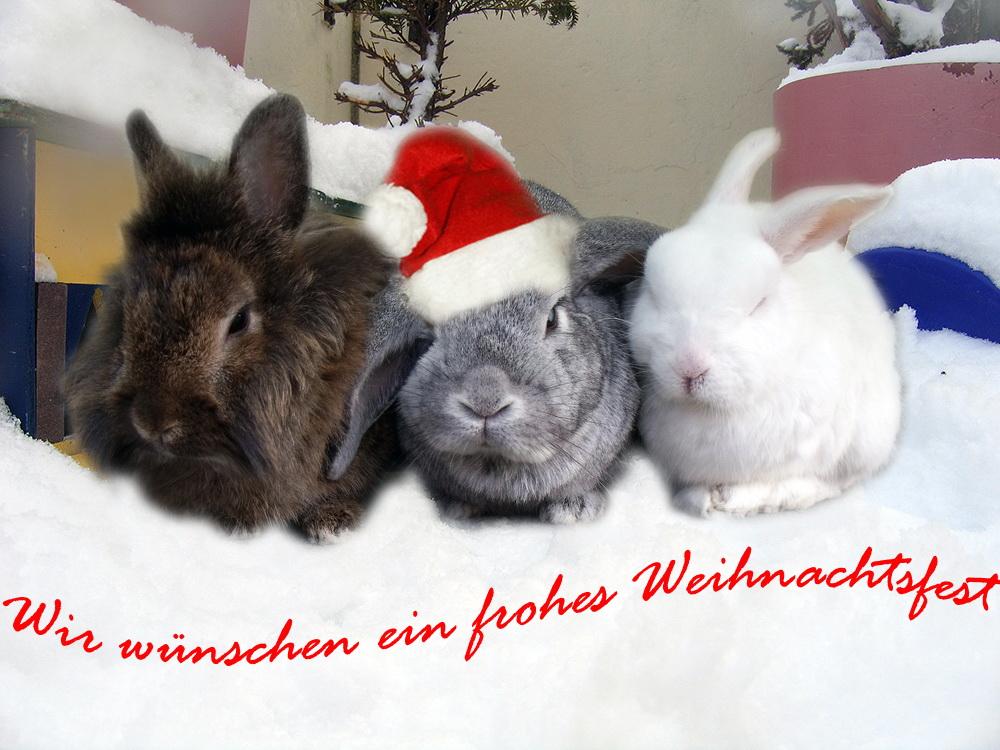 Von Herzen ein frohes Weihnachtsfest!