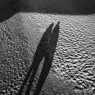 Von Licht und Schatten, von der Helligkeit und der Dunkelheit  und anderen Gemeinsamkeiten