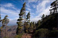 von oben ist la Gomera