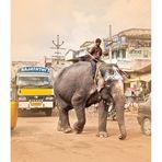 Von Pferde- und Elefantenstärken...