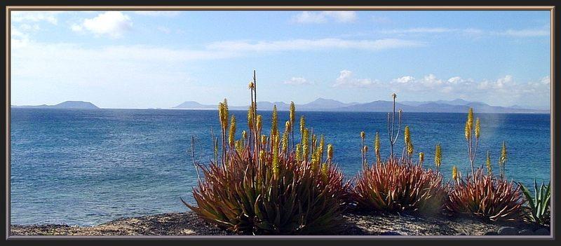 Von Playa Blanca bis Orzola (7)