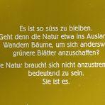 von Robert Walser