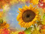 Von wegen Herbst...