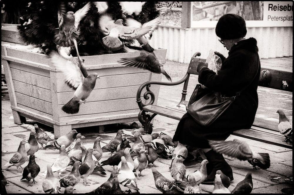 vor 36 Jahren : Alte Frau beim Taubenfüttern  am Graben in Wien