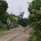 Vor dem ersten Zug wird noch schön saubergemacht.