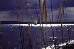 Vor dem Gewitter am Bodensee