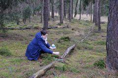 Vor dem Kirchgang bekommen noch alle Waldbewohner ihr Futter