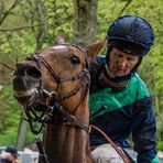 Vor dem Pferderennen in Grafenberg - das Pferd hatte offensichtlich keine Lust