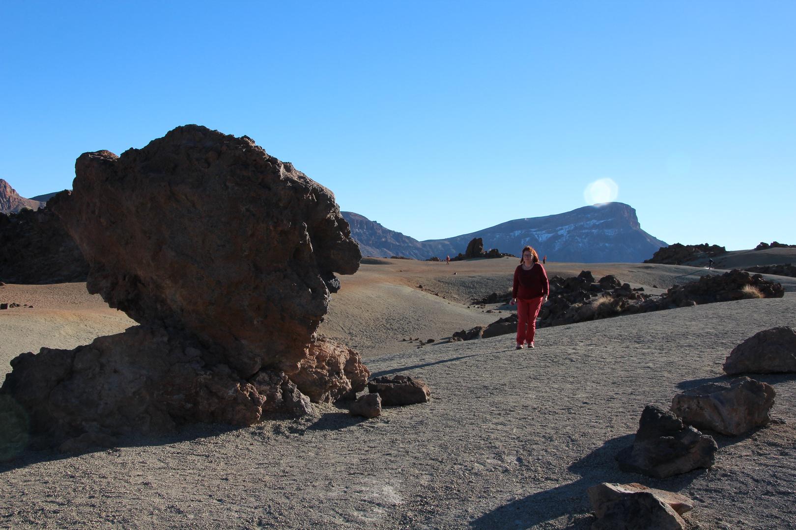 Vor dem Teide