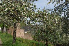 Vor der Klostermauer