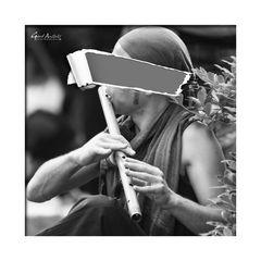 --- vor lauter Flöten... ---