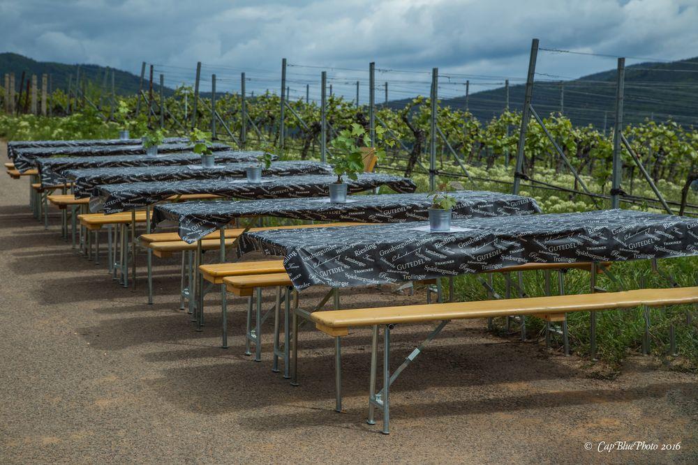 Vorbereitete SItzplätze für Weingenießer beim Birkweiler Weinfrühling