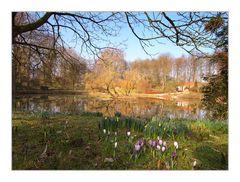 Vorfrühling im Botanischen Garten in Münster