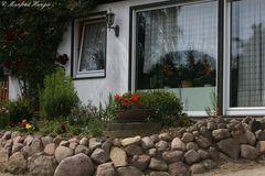 Vorgarten mit Steinmauer 1