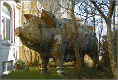 Vorgarten    Schwein