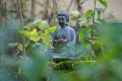 Vorgartenbuddha
