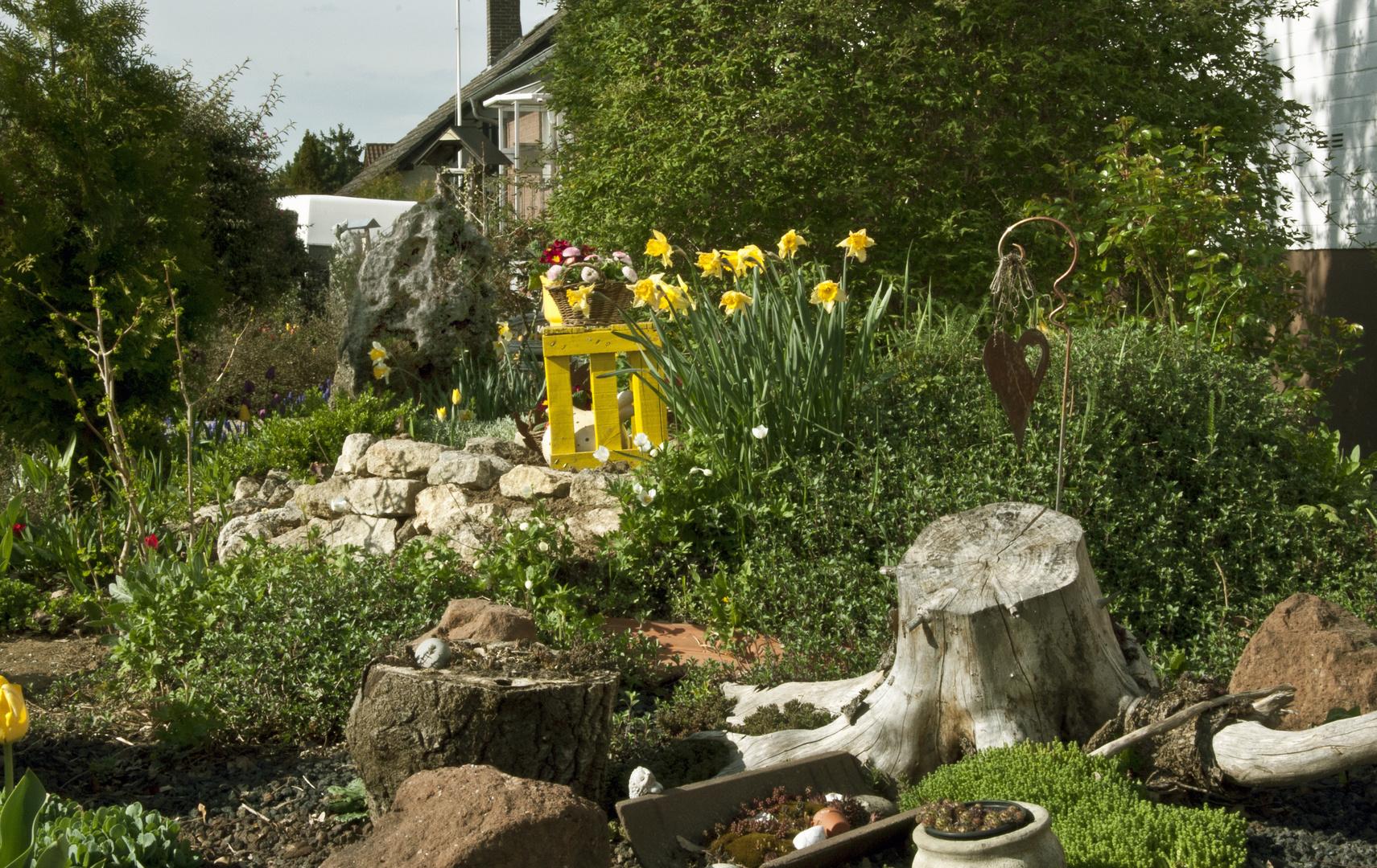 Vorgartengestaltung Foto Bild Jahreszeiten Fruhling Natur