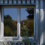 Vorm Fenster