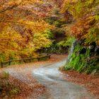 Vortice d'autunno