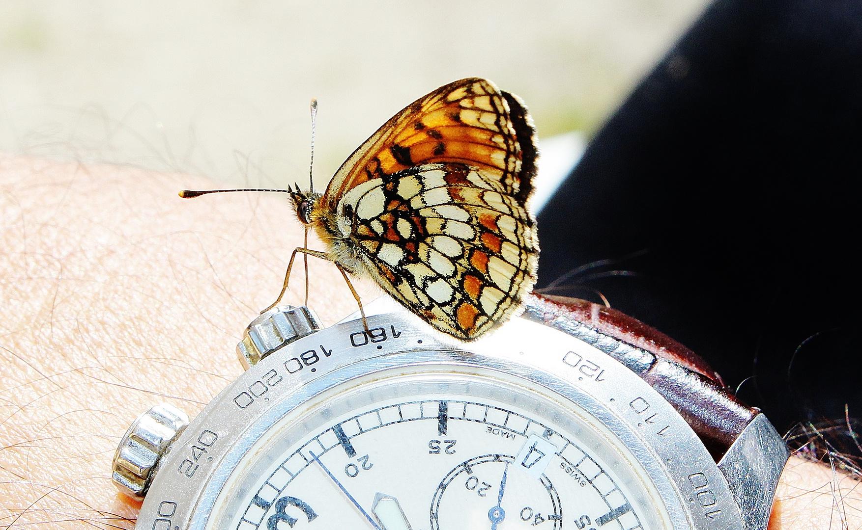 Votre montre n'est pas à l'heure!