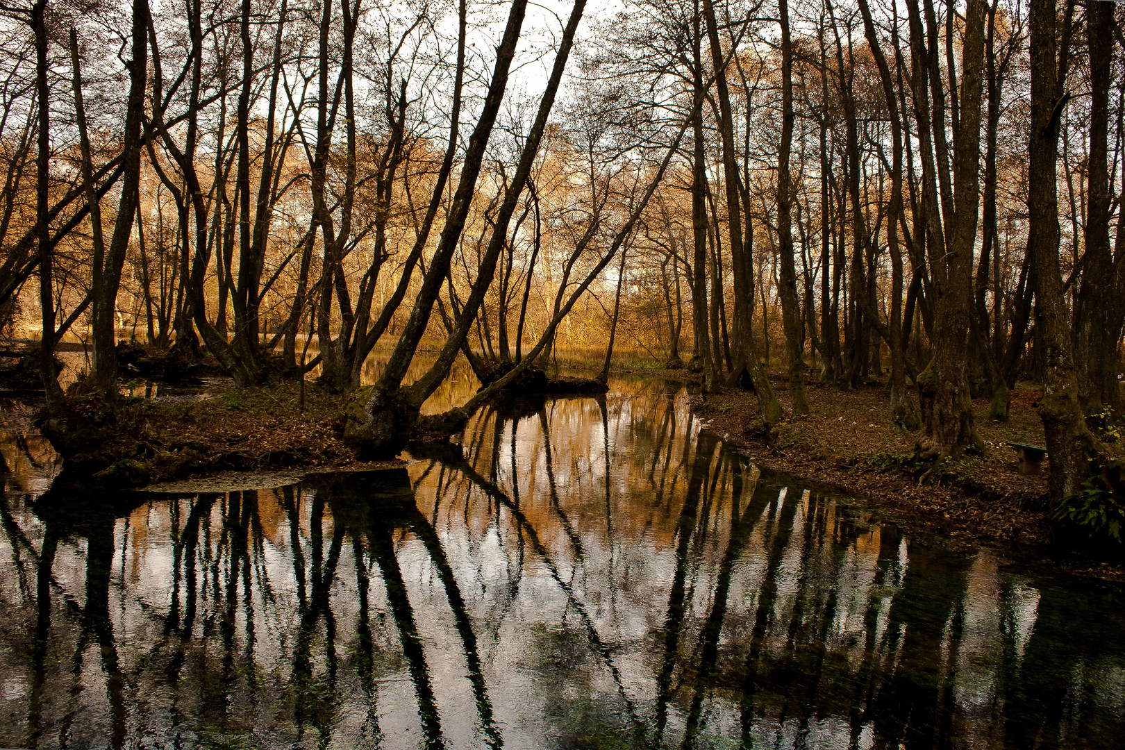 Vrelo Bosna Park 2